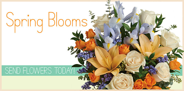 A selection of blooming plants and seasonal flowers